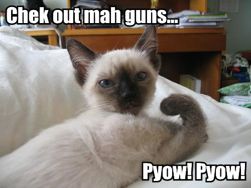 Chek out mah guns... Pyow! Pyow!