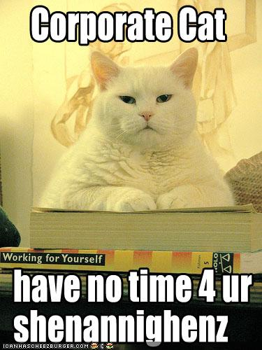 Corporate Cat have no time 4 ur shenannighenz