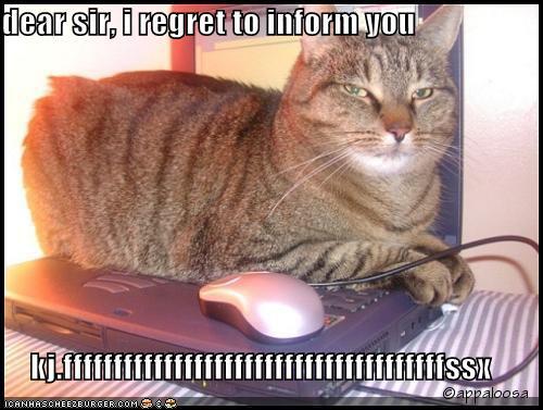 dear sir, i regret to inform you