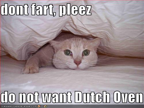 dont fart, pleez do not want Dutch Oven