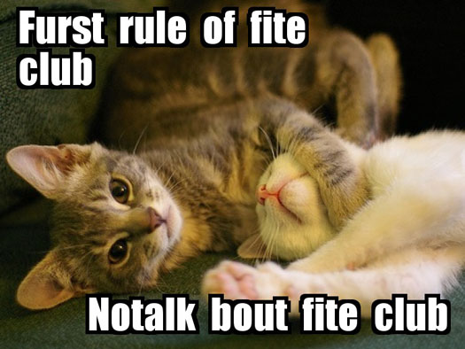 Furst rule of fite club Notalk bout fite club