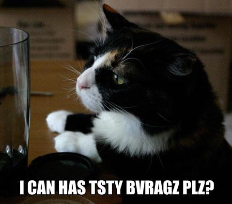 I CAN HAS TSTY BVRAGZ PLZ?
