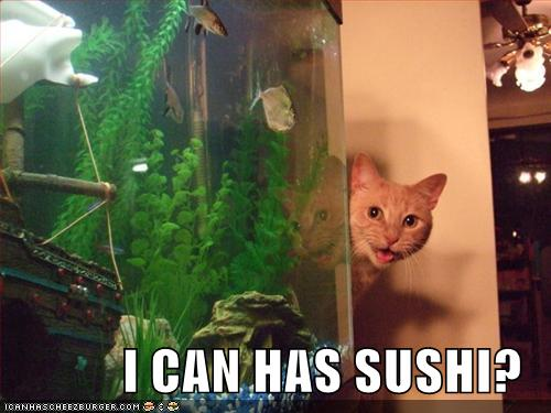 I CAN HAS SUSHI?