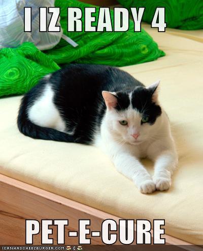 I IZ READY 4 PET-E-CURE