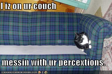 i iz on ur couch messin with ur percextions.