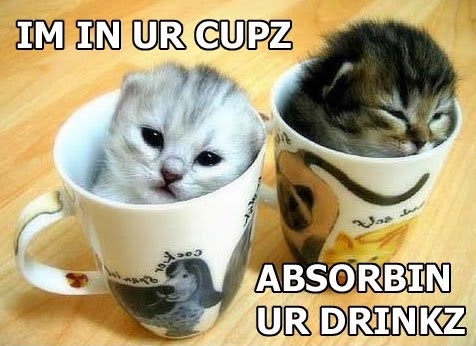 IM IN UR CUPZ ABSORBIN UR DRINKZ