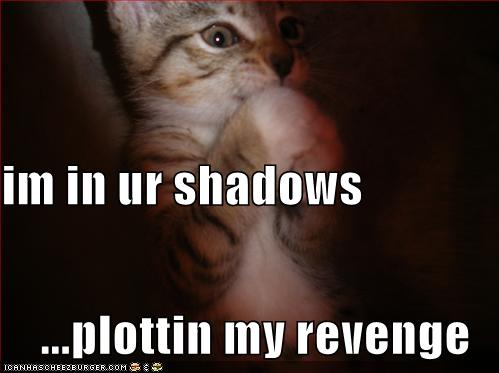 im in ur shadows ...plottin my revenge