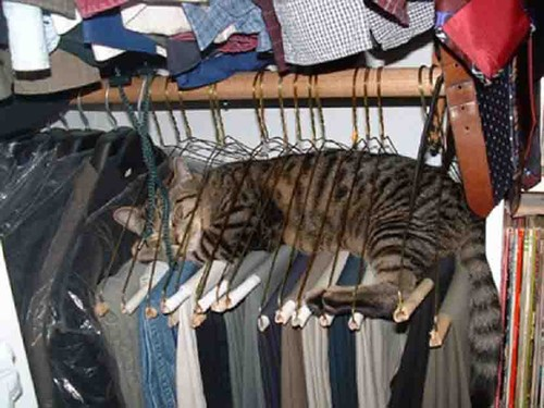 Hanger Bed