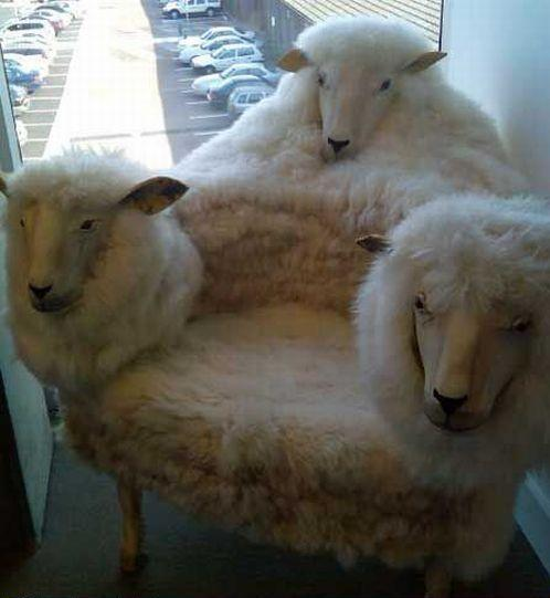 Three Sheep Heads Chair