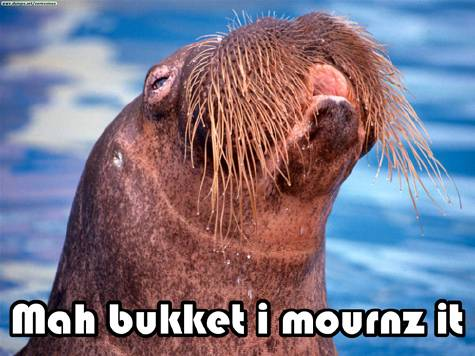 Mah bukket i mournz it