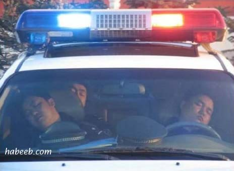 Hard at Work Cops