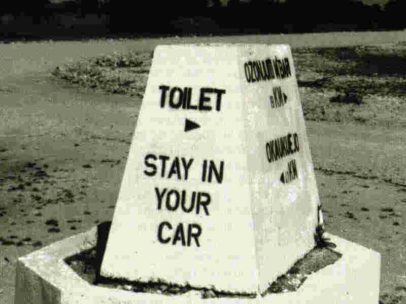 Stay In Car to Use Toilet