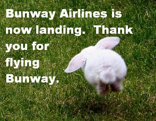 Bunway Airlines is now landing. Thank you for flying Bunway