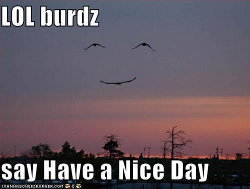 LOL burdz say Have a Nice Day
