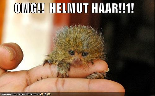 OMG!! HELMUT HAAR!!1!
