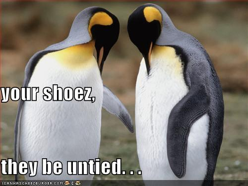 your shoez, they be untied...