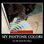 MY PANTONE COLORS - Motivational Poster