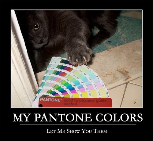 MY PANTONE COLORS