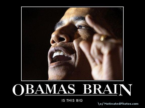 funny brain. lol funny brain obamas rain