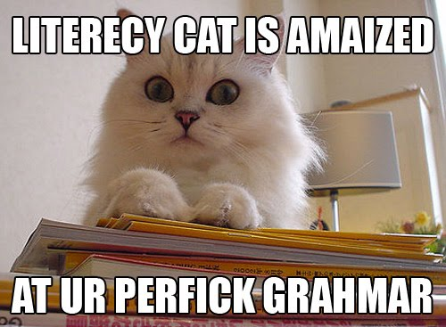 LITERECY CAT IS AMAIZED AT UR PERFICK GRAHMAR