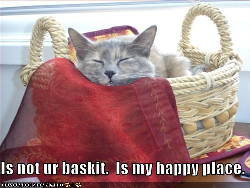 Is not ur baskit. Is my happy place