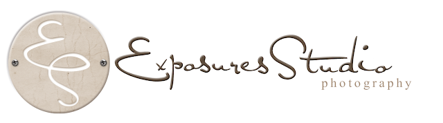 Exposure Studio Blog Design