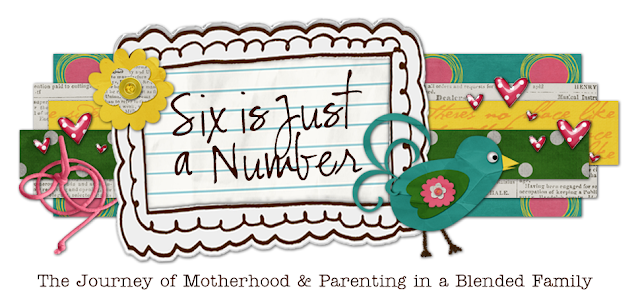 Six is Just a Number Blog Design