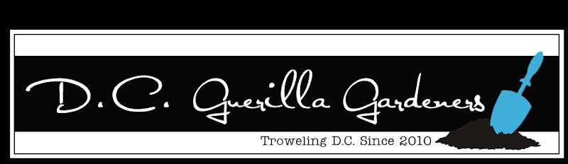 DC Guerilla Gardeners Blog Design