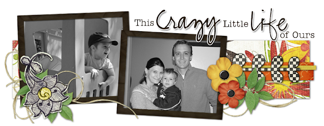 This Crazy Little Life Blog Design