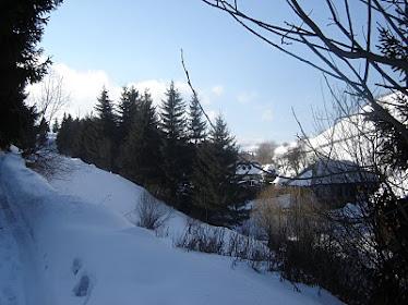 Pârâul Duzii