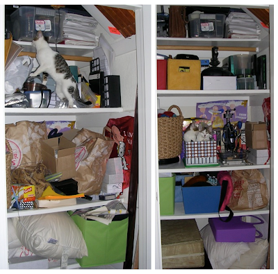 closet, before and after - with kittens