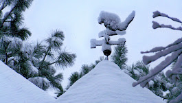Snowy cat weathervane sits
