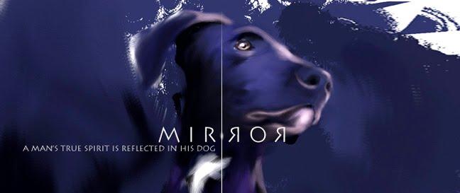 Mirror Studio
