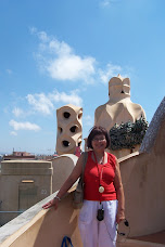 Roof top of Casa Mila