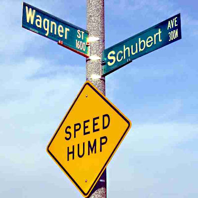 street sign at the intersection of Wagner Street and Schubert Avenue (c) David Ocker
