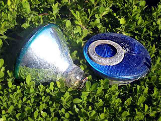 Bill Kraft Backyard - two blue lights in the bushes