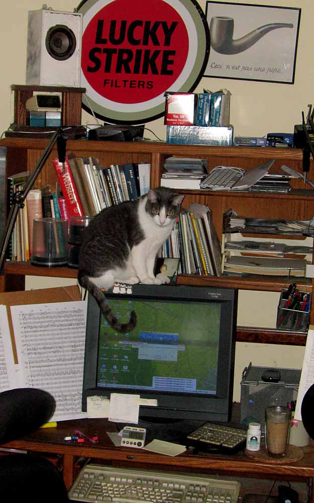 David Ocker's computer desk watched over by Crackle the cat