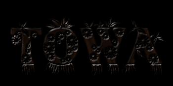 [TOWA]-LOGO