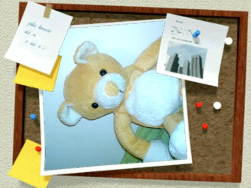 [image-upload-66-780690.jpe]
