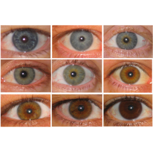 Best Way To Change Eye Color Naturally