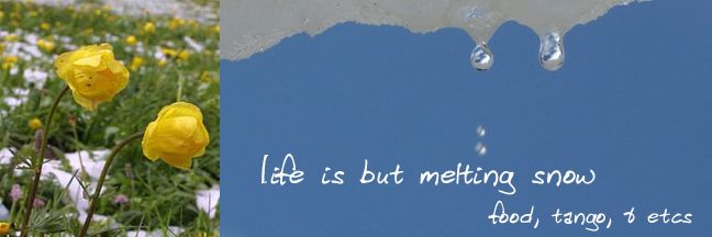 Life is but Melting Snow