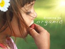 Eat Local & Organic