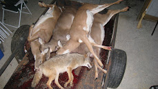 Body Count -ANIMALS KILLED ANNUALLY By Sportsman/Hunters