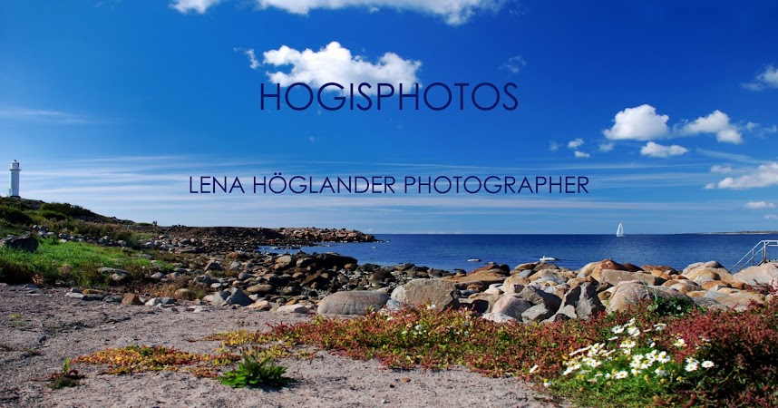 Hogisphotos