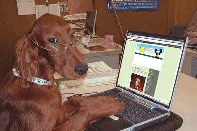 Esse é o nosso cão ! Dog-no-pc