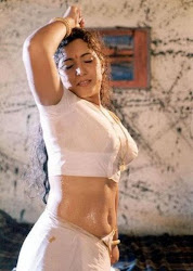 Hot Spicy Sexy Actress Masala Pictures