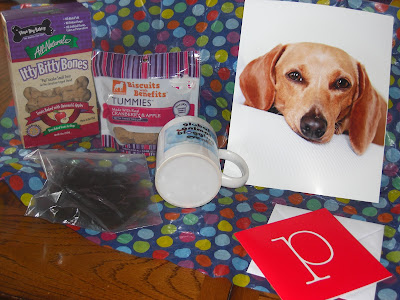 Picture of the awesome gifts - a cute coffee mug (with the GABE logo!), a awesome picture of Puddles, a little baggie of Albert's fluff & 2 different kind of yummy dog treats. (complete with polka dot tissue paper for padding!)