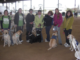 Group picture. Dogs seen are Rocky, J.J, Bingo, Sparkie, Toby and Tina