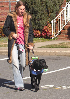 Full view picture of Duchess & I walking, I'm watching Duchess and she's wearing her coat/harness