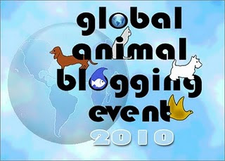 The words say (Global Animal Blogging Event 2010 - the words have little animals around them, and their is a big earth behind, it is very nice!